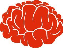 ほんまもんの脳トレ屋_1