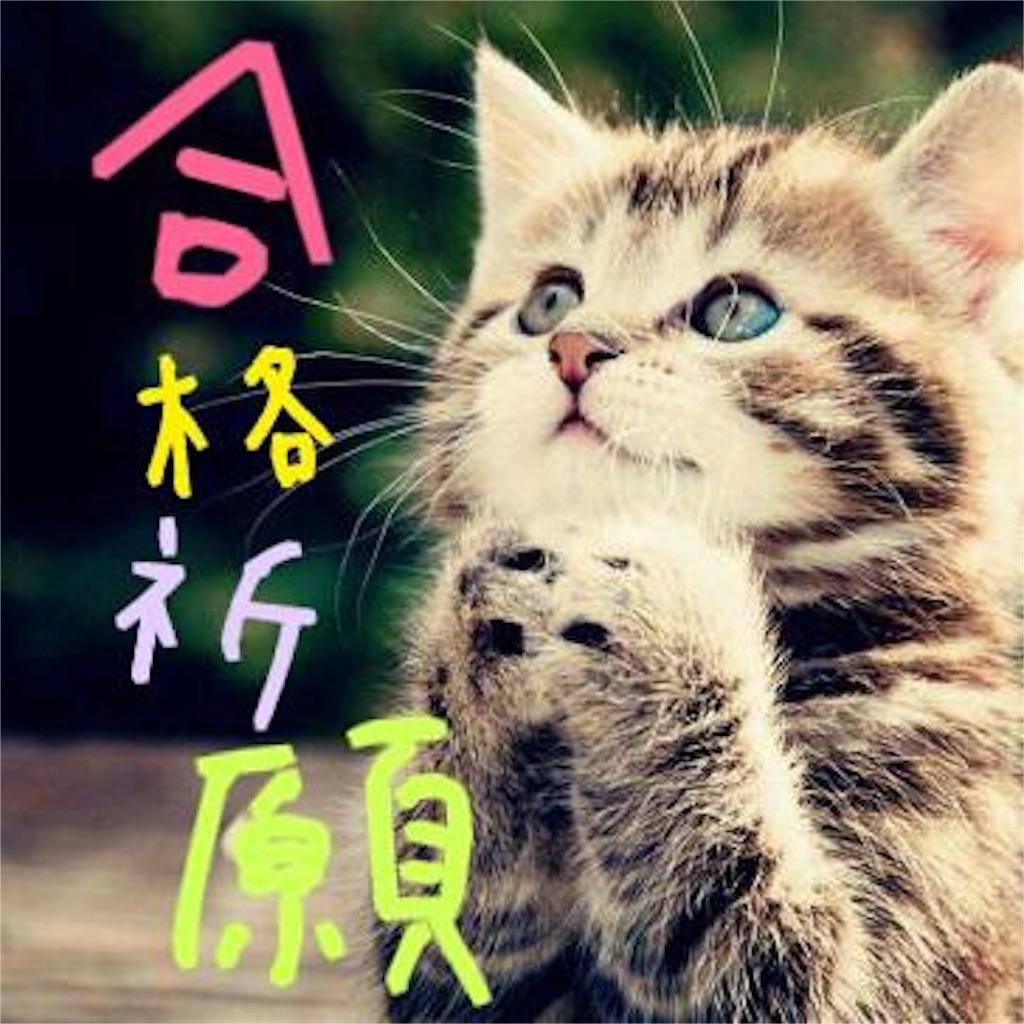 合格祈願ネコ